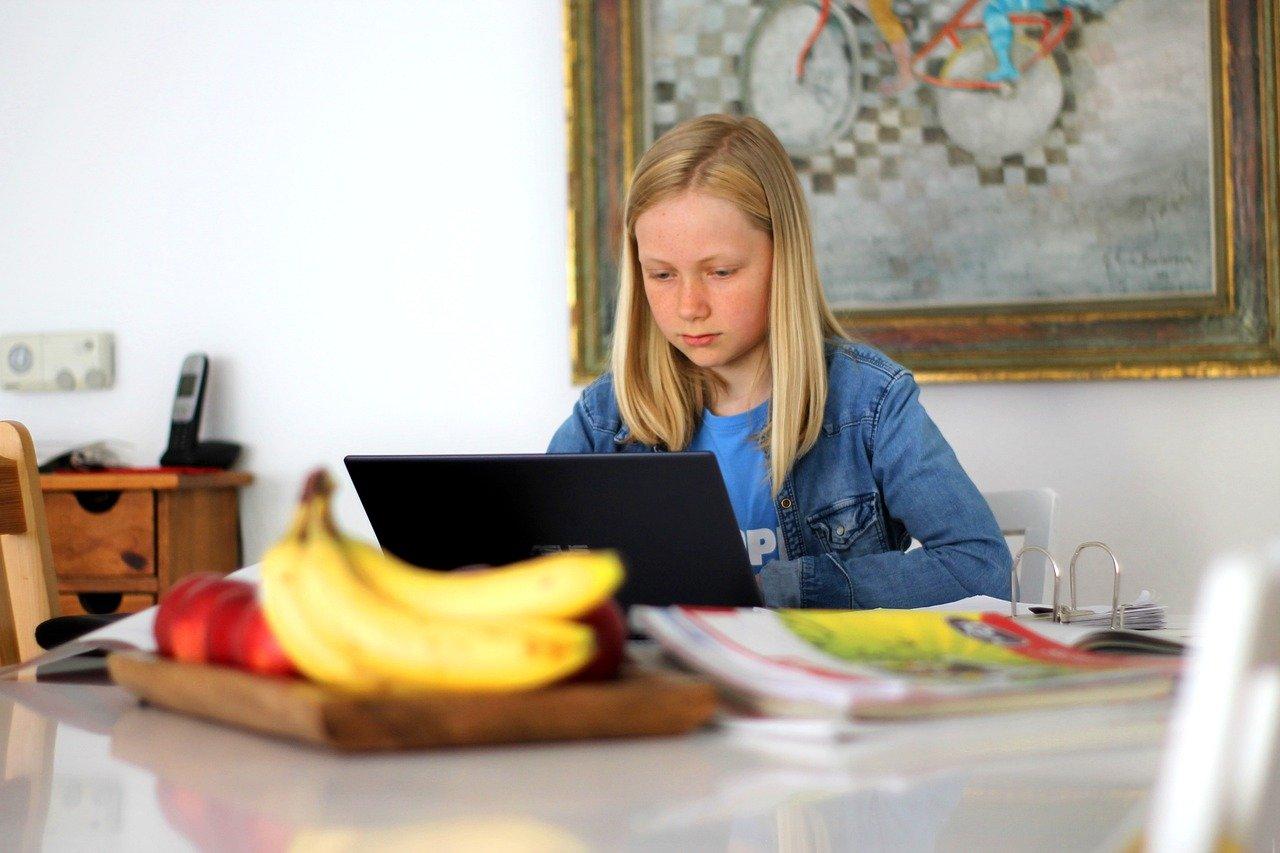 homeschooling, school, technology